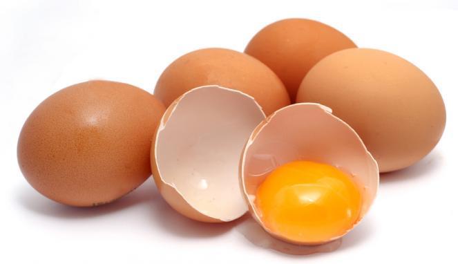 Image result for telur