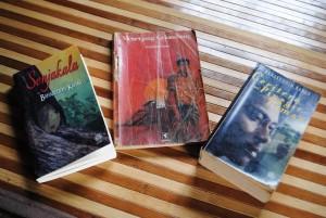 Beberapa naskah novel hasil karya Baharuddin