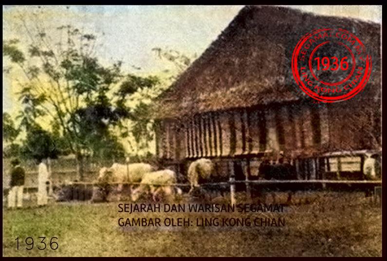 Gambar Oleh: Singapore Archive | Dataran Segamat pada tahun 1936 ketika sambutan hari Agrikultur Segamat. Lokasi ini sekarang adalah menara bendera.